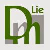 LieDM_VMA